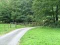 Bridge over the brook - geograph.org.uk - 543292.jpg