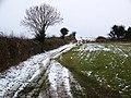 Bridleway, Forston - geograph.org.uk - 1157060.jpg