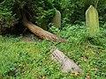 Brockley & Ladywell Cemeteries 20170905 102208 (33761145488).jpg
