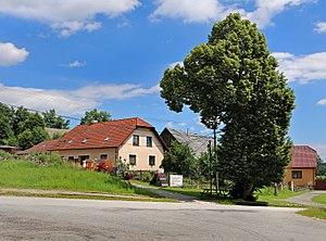 Brtnička - Image: Brtnička, common