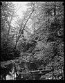 Buck Hill Falls, PA LCCN2016878224.jpg
