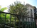 Bucuresti, Romania, Casa pe Str. Occidentului nr. 14, sect. 1 (detaliu 3).JPG