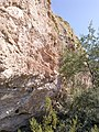 Butcher Jones Trail - Mt. Pinter Loop Trail, Saguaro Lake - panoramio (151).jpg