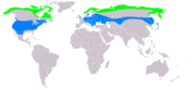 Buteo lagopus distribution map.png