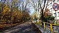 Bytom - Miechowice ulica Matki Ewy - panoramio (2).jpg