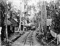 COLLECTIE TROPENMUSEUM Spoorlijntje door bivak Nang Roé Atjeh TMnr 10001767.jpg