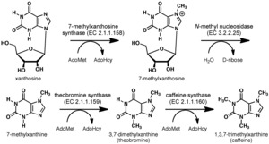 Synthesis diagram