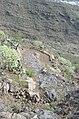 Camino de las Vueltas - panoramio.jpg
