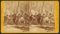 Camp at noon at Thomas Foster's, by Jenney, J. A. (James A.) 3.png