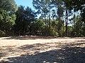 Campo de Areia, Área Verde Jardim Itália. - panoramio (1).jpg