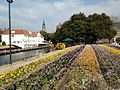 Canal in Huis Ten Bosch 20140118-2.JPG