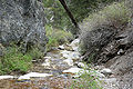 Carpenter Canyon creek 3.jpg