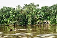 Cuenca Del Amazonas Wikipedia La Enciclopedia Libre