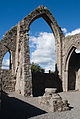 Castledermot Friary North Transept North Window 2013 09 06.jpg