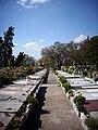 Cementerio Metropolitano Santiago Chile.jpg