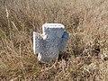 Cemetery in Kosharka 17.jpg