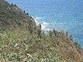 Cesme uc nokta (ucurum) 6 - panoramio.jpg