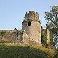 Château de Bidache - donjon - vue du Thys.jpg