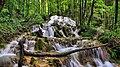 Châteauvieux-les-Fossés, cascade tufière de Vergetolle.jpg