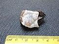 Chalcedony opal - SiO2·nH2O (40655472142).jpg