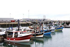 Chalutiers de pêche côtière (15).JPG