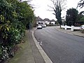 Chase Green Avenue, Enfield - geograph.org.uk - 385008.jpg