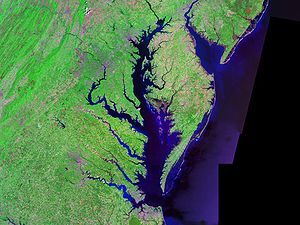 Satellitenfoto der Chesapeake Bay