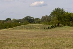 Cheskiki-mound-tn1.jpg