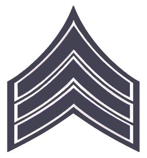 Saint Paul Police Department - Image: Chicago PD Sergeant Stripes