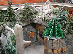 Seattle Children's Museum - Mountain exhibit