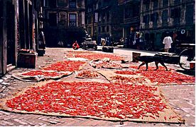 Chillies drying in Kathmandu.jpg