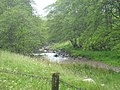 Chirdon Burn - geograph.org.uk - 1396937.jpg