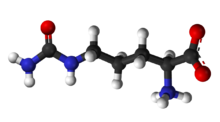 Ball-and-stick model of zwitterion
