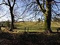 Clanabogan Townland - geograph.org.uk - 1703112.jpg