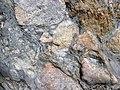 Clast-rich mixtite (Coleman Member, Gowganda Formation, Paleoproterozoic, ~2.3 Ga; Percival Lake roadcut, Ontario, Canada) 16 (32783645457).jpg