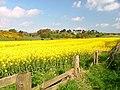 Cloughton - geograph.org.uk - 10403.jpg