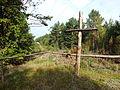 Cmentarz z I wojny światowej lata 1914-1918 Gnieździska 5.JPG