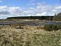 Cogbrae Lochan - geograph.org.uk - 170905.jpg