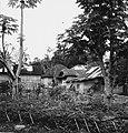Collectie NMvWereldculturen, TM-20001014, Negatief- 'Gezicht op huizen en tuinen', fotograaf Boy Lawson, 1971.jpg