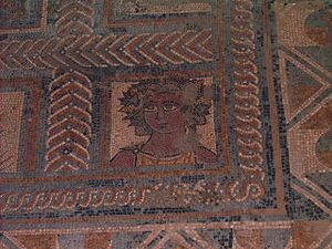 Ancient Portugal - Ancient Roman mosaic in Conimbriga.