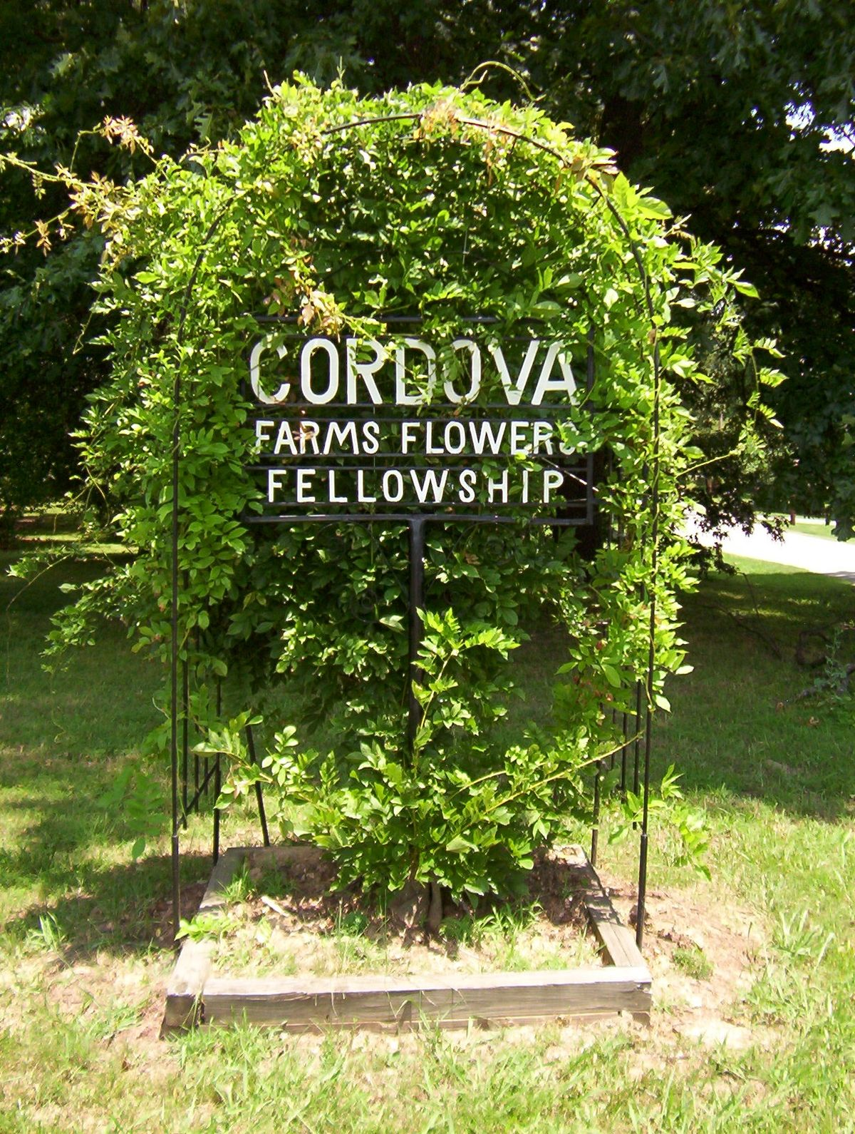 Cordova Tennessee Wikipedia