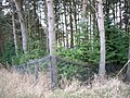 Corner of garden fence - geograph.org.uk - 1041553.jpg
