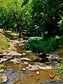 Creek at Municipal Park Opelika, AL.jpg