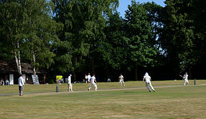Bramley, Surrey - A village cricket match between Grafham and Smithbrook, and Alton in 2015