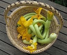 Curved green squashes