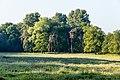 Dülmen, Naturschutzgebiet -Am Enteborn- -- 2014 -- 0192.jpg