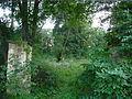 Dabasi halasz arboretum.jpg