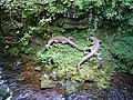 Dan-Yr-Ogof show caves - geograph.org.uk - 1474304.jpg