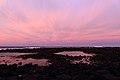 Dawn Clouds (19997132951).jpg