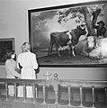De Stier van Potter, die na de tentoonstelling zal terugkeren naar het Maurits, Bestanddeelnr 900-8732.jpg